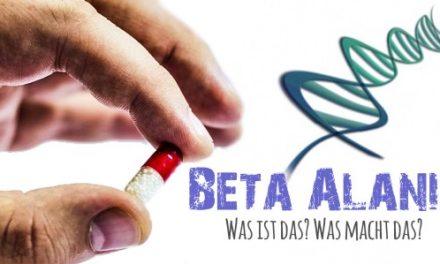 BETA ALANIN – Was ist das? Was macht das?