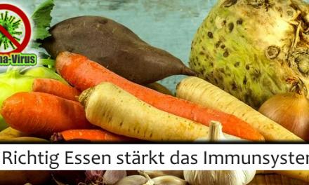 Richtig essen stärkt das Immunsystem