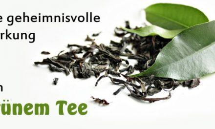 Die geheimnisvolle Wirkung von Grünem Tee