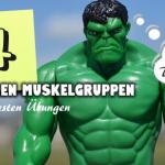 Die 4 wichtigen Muskelgruppen! Inkl. Übungen