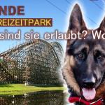 Mit dem Hund in den Freizeitpark… wo ist´s erlaubt?