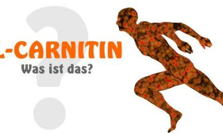 L-Carnitin… was ist das und wozu braucht man das?