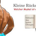 Kleine Rückenkunde – Wo steckt welcher Muskel