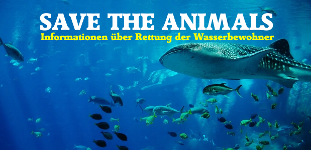 Save the Animals – Rettung der Wasserbewohner