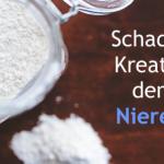 Schadet Kreatin den Nieren?